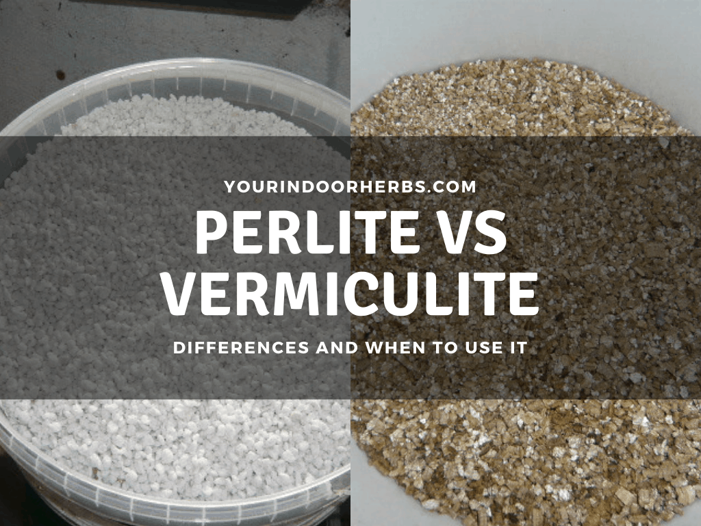 Perlite vs Vermiculite: Differences (and When To Use Them) �C Your Indoor Herbs1024 x 768 png 471kB